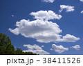 青空 雲 木の写真 38411526