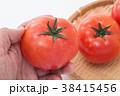 トマト 38415456