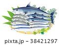 青魚 鰹 鯖 鯵 秋刀魚 鰯 白背景 38421297