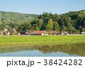美土里町 風景 春の写真 38424282