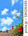 空 雲 花の写真 38426489
