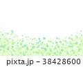 ナチュラル 38428600