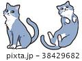 猫 挿絵 動物のイラスト 38429682