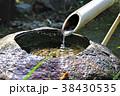 日本庭園 手水鉢 つくばいの写真 38430535