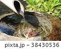 日本庭園 手水鉢 つくばいの写真 38430536