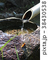 日本庭園 手水鉢 つくばいの写真 38430538