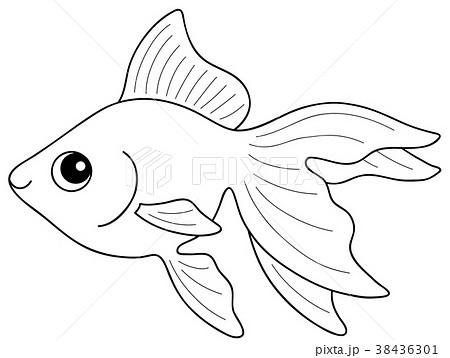 金魚 流金琉金 ぬりえのイラスト素材 38436301 Pixta