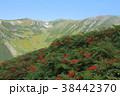 双六岳 38442370