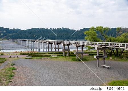 大井川にかかる蓬莱橋(静岡県島田市) 38444601