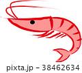 たかえび エビ えび 海老 蝦 38462634