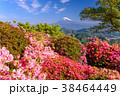 富士山 葛城山 花の写真 38464449