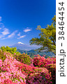 富士山 葛城山 花の写真 38464454