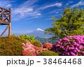 富士山 葛城山 花の写真 38464468