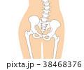 骨格 骨 人体のイラスト 38468376