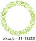 野菜 円 ベクターのイラスト 38468835