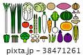 野菜イラスト_バリエーションA 38471261