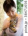 猫 ペット 動物の写真 38471656