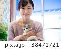猫 ペット 動物の写真 38471721