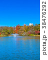 東京 井の頭公園の紅葉 38476292
