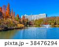 東京 井の頭公園の紅葉 38476294