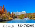 東京 井の頭公園の紅葉 38476295