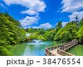東京 井の頭公園の風景 38476554