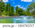 東京 井の頭公園の風景 38476557