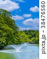 東京 井の頭公園の風景 38476560