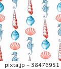 水彩画 貝 貝がらのイラスト 38476951