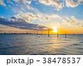 江川海岸 海 夕景の写真 38478537