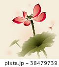 睡蓮 スイレン 水連のイラスト 38479739