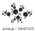 フローラル パターン 柄のイラスト 38487425