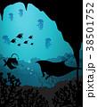 生き物 生物 水中のイラスト 38501752