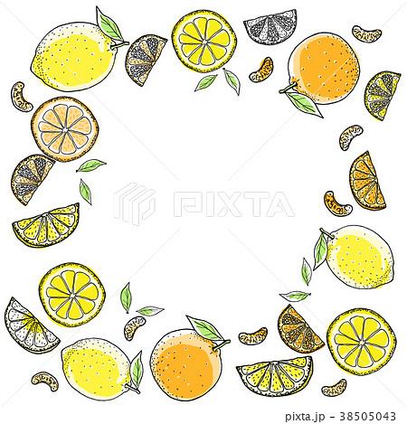 レモンとオレンジ手描きの線画 38505043