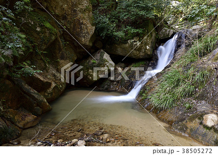 金引の滝下流の白竜の滝(京都府宮津市) 38505272