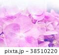 植物 壁紙 あじさいのイラスト 38510220