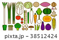 野菜イラスト_バリエーションD 38512424
