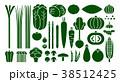 野菜イラスト_バリエーションF 38512425