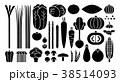 野菜イラスト_バリエーションG 38514093