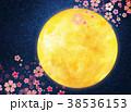 水彩イラスト 月 夜桜 38536153