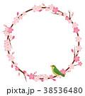 桜 花 春のイラスト 38536480