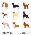 コレクション アイコン イコンのイラスト 38538128