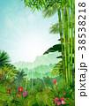 背景 トロピカル 熱帯のイラスト 38538218