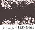桜 花 蕾のイラスト 38543401
