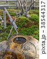 日本庭園 庭園 つくばいの写真 38544317
