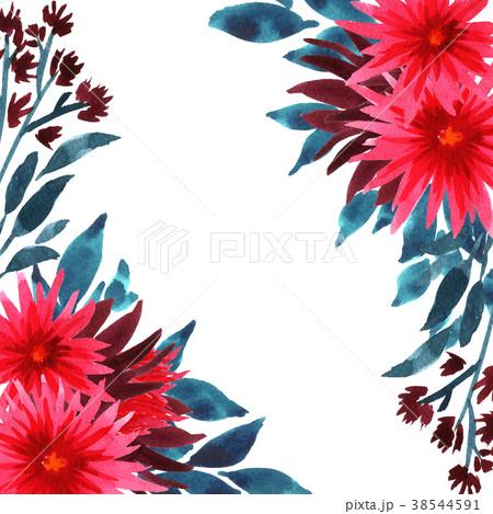 Watercolor chrysanthemum flowers 38544591