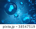 3Dイラスト 細胞 立体のイラスト 38547519