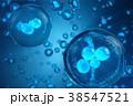 細胞 バックグラウンド バックグランドのイラスト 38547521