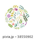 フラワー 花 円のイラスト 38550902