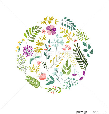 Round decoration element - flowers, leaves, herbs 38550902